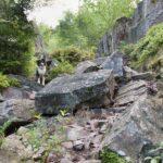 Der Bärenfels ist für kletterfeste Hunde kein Problem