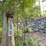 Markierung Felsenweg am Bärenfels