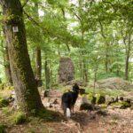 Stehender Stein am Felsenweg