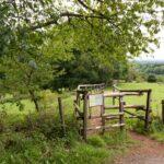 Überquerung der Viehweide beim Feriendorf